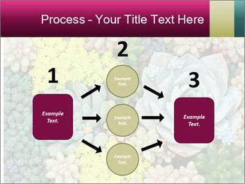 Botanical Composition PowerPoint Template - Slide 92