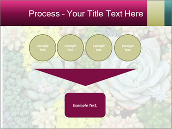 Botanical Composition PowerPoint Templates - Slide 93