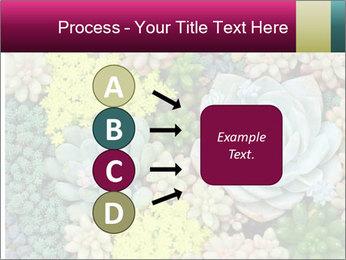 Botanical Composition PowerPoint Templates - Slide 94