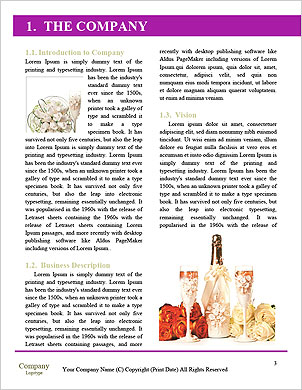 0000089100 Word Template - Page 3