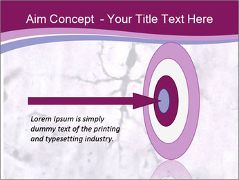 Nervous Cells PowerPoint Templates - Slide 83
