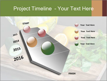 Refreshing Lemon Drink PowerPoint Template - Slide 26