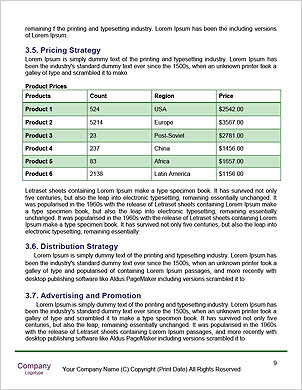 0000089107 Word Template - Page 9