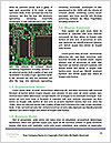 0000089108 Word Templates - Page 4