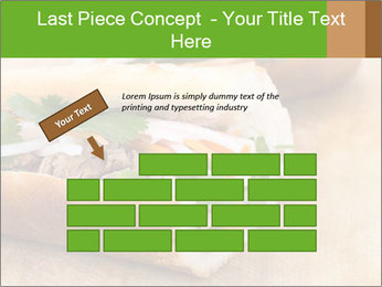 Meat Sandwich PowerPoint Templates - Slide 46