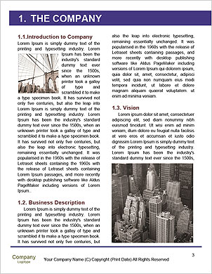 0000089126 Word Template - Page 3