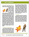 0000089127 Word Template - Page 3