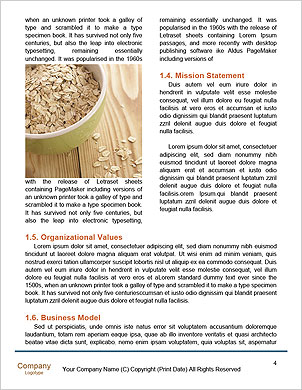 0000089128 Word Template - Page 4