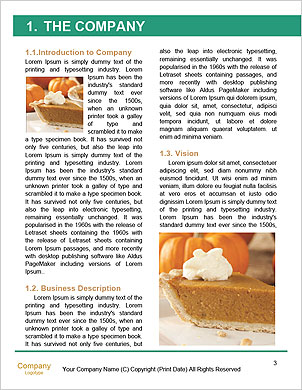 0000089129 Word Template - Page 3
