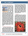 0000089132 Word Templates - Page 3