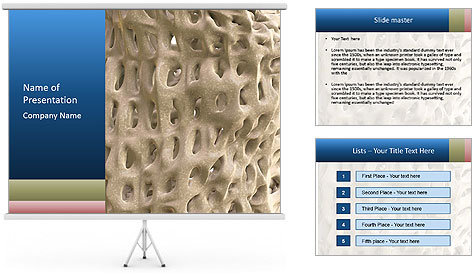 Osteoporosis PowerPoint Template