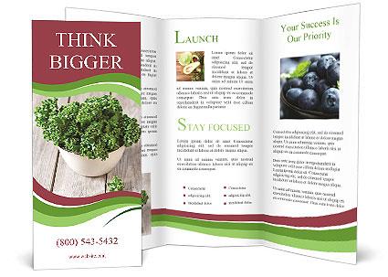 0000089136 Brochure Template
