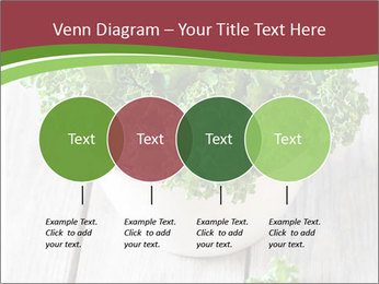 Veg Diet PowerPoint Template - Slide 32