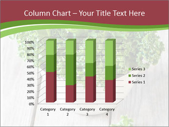 Veg Diet PowerPoint Templates - Slide 50