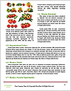 0000089136 Word Template - Page 4