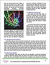 0000089142 Word Templates - Page 4
