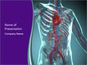 Heart System PowerPoint Templates