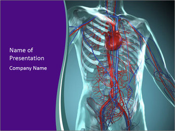 Heart System PowerPoint Template