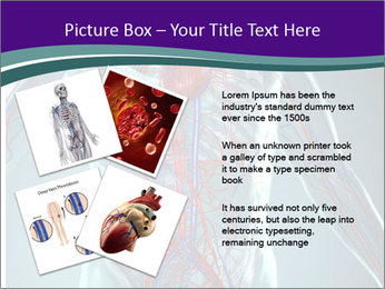Heart System PowerPoint Templates - Slide 23