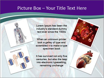Heart System PowerPoint Template - Slide 24