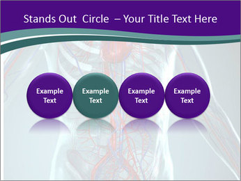 Heart System PowerPoint Template - Slide 76
