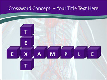 Heart System PowerPoint Templates - Slide 82