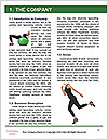 0000089144 Word Template - Page 3