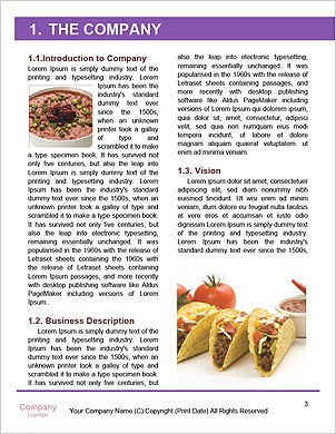 0000089146 Word Template - Page 3