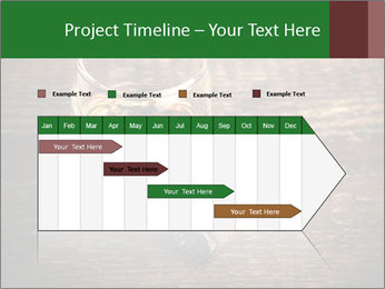 Unfinished Cigar PowerPoint Templates - Slide 25