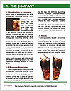 0000089151 Word Template - Page 3