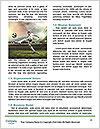 0000089152 Word Templates - Page 4
