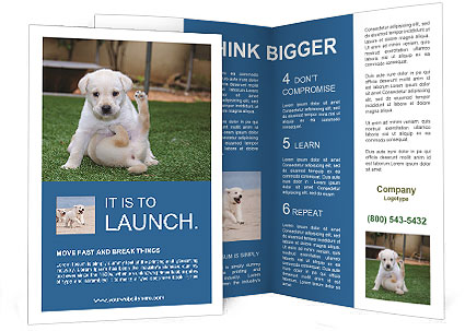 0000089155 Brochure Template