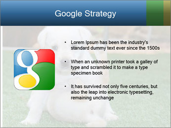 White Puppy PowerPoint Template - Slide 10