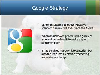 White Puppy PowerPoint Templates - Slide 10