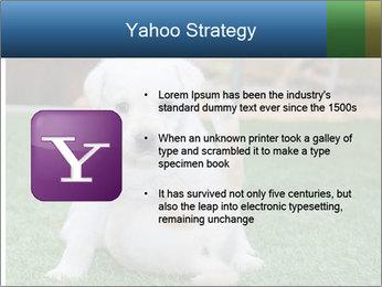 White Puppy PowerPoint Templates - Slide 11