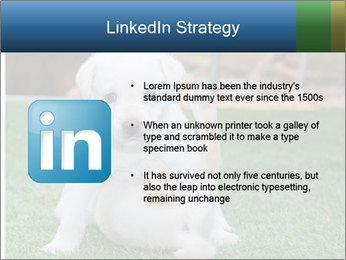 White Puppy PowerPoint Templates - Slide 12