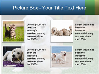 White Puppy PowerPoint Template - Slide 14