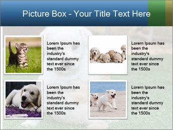 White Puppy PowerPoint Templates - Slide 14