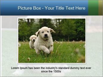 White Puppy PowerPoint Templates - Slide 15