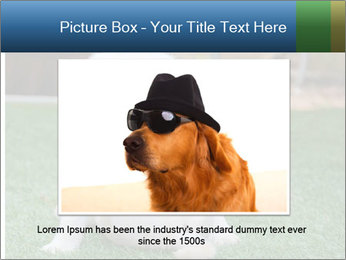 White Puppy PowerPoint Templates - Slide 16