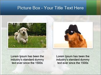 White Puppy PowerPoint Templates - Slide 18