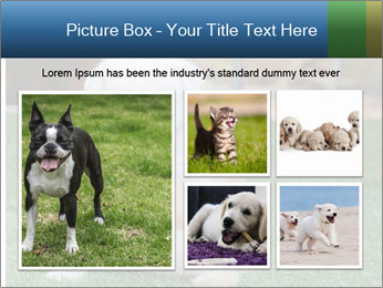 White Puppy PowerPoint Template - Slide 19