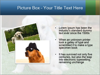 White Puppy PowerPoint Template - Slide 20
