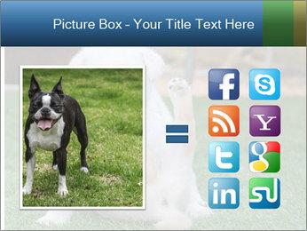 White Puppy PowerPoint Templates - Slide 21