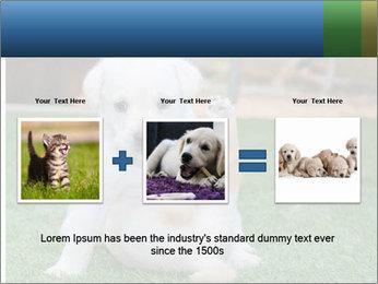 White Puppy PowerPoint Templates - Slide 22