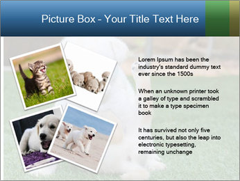 White Puppy PowerPoint Template - Slide 23