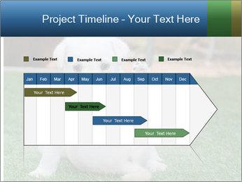 White Puppy PowerPoint Templates - Slide 25
