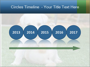 White Puppy PowerPoint Templates - Slide 29