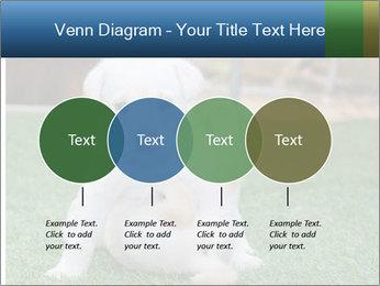 White Puppy PowerPoint Templates - Slide 32