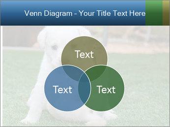 White Puppy PowerPoint Templates - Slide 33